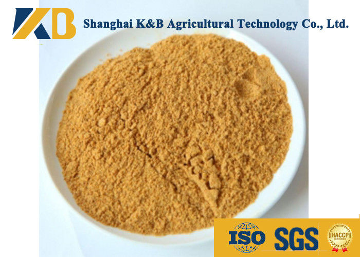 Fresh Corn Protein Powder Animal Feed Supplement Less Than 20 Ppb Aflatoxin